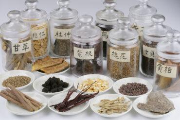 TAO東洋医学研究会 年間講座